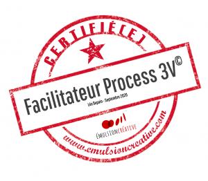 animateur certifié process 3v